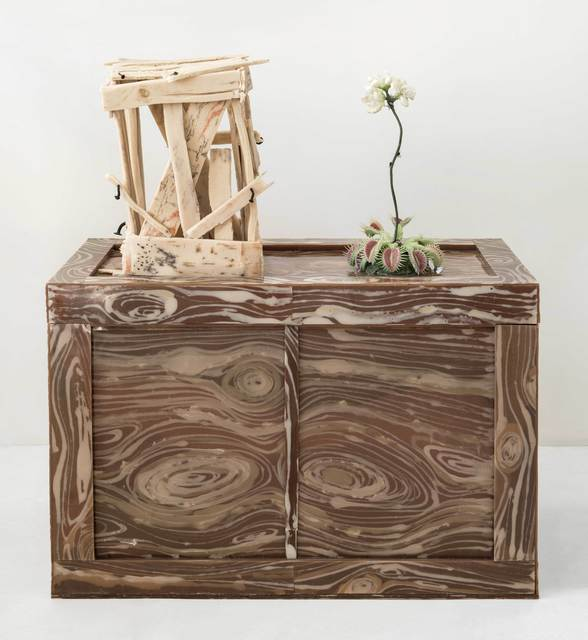 , 'Venus Flytrap with Xerxes Blue (Extinct), Two Crates,' 2012-19, Marc Straus