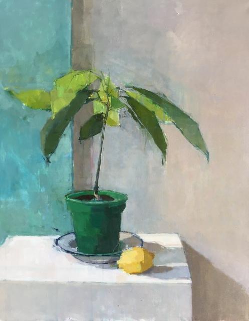 , 'Allotment Avocado,' 2018, Sarah Wiseman Gallery