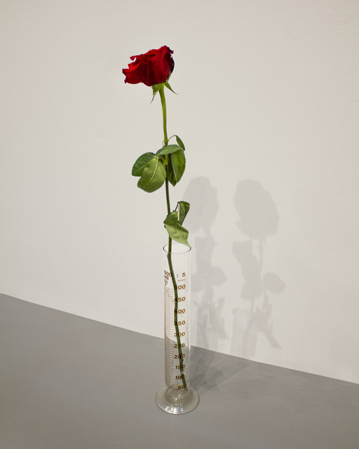 , 'Eine Rose fur direkte Demokratie,' 1968, Glenda Cinquegrana Art Consulting