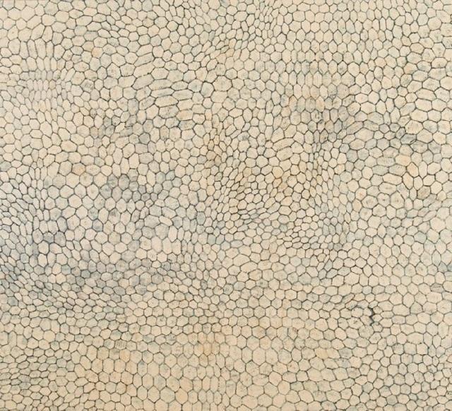 , 'Bitter Honey,' , Isabella Garrucho Fine Art