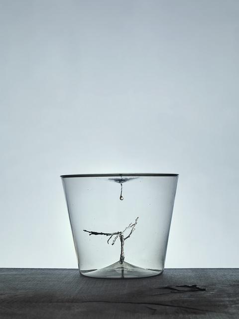Lada Semecká, 'Broken Tree', 2020, Design/Decorative Art, Blown glass, wood, magnet, Galerie Kuzebauch