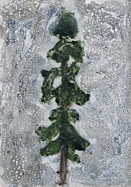 , 'Silver Ground Ponderosa,' 2013, David Richard Gallery