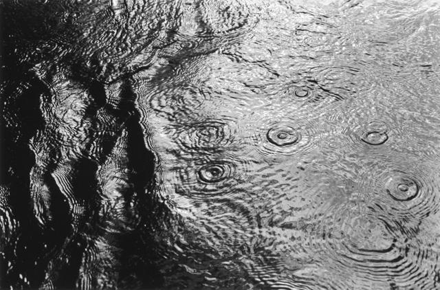 , 'Untitled / Kiyosato, Nagano 2001.11.19,' 2001, Taka Ishii Gallery