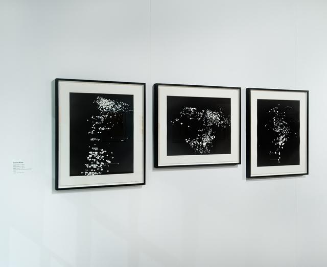 , 'Night Pixel I, II & III,' 2012, Joanna Bryant & Julian Page