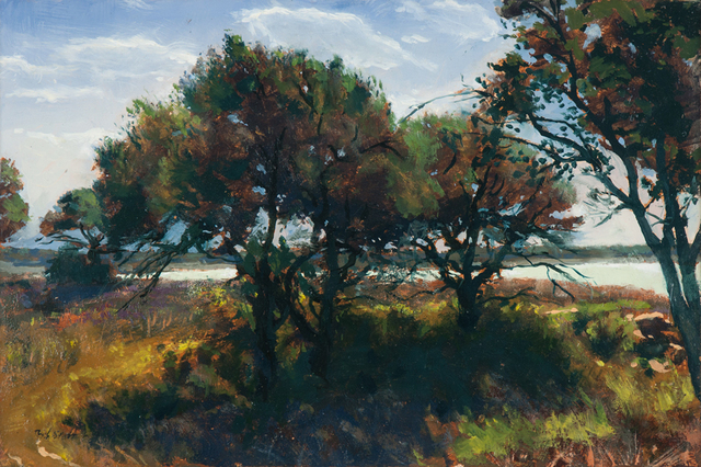 Bob Stuth-Wade, 'Early Morning, Proctor Lake', 2017, Valley House Gallery & Sculpture Garden