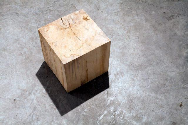 Helena Hladilovà, 'Scultura sonora', 2013, Sculpture, Oak wood, woodworm, woodworm noise, CO2