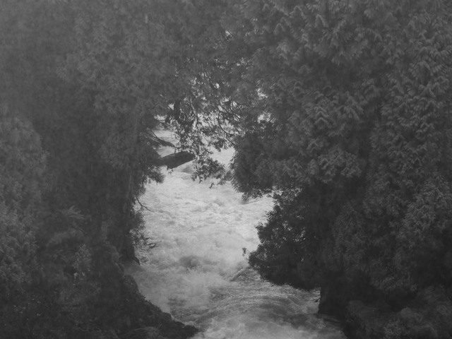 Ron Jude, 'River', 2017, Photography, Archival pigment print, Gallery Luisotti
