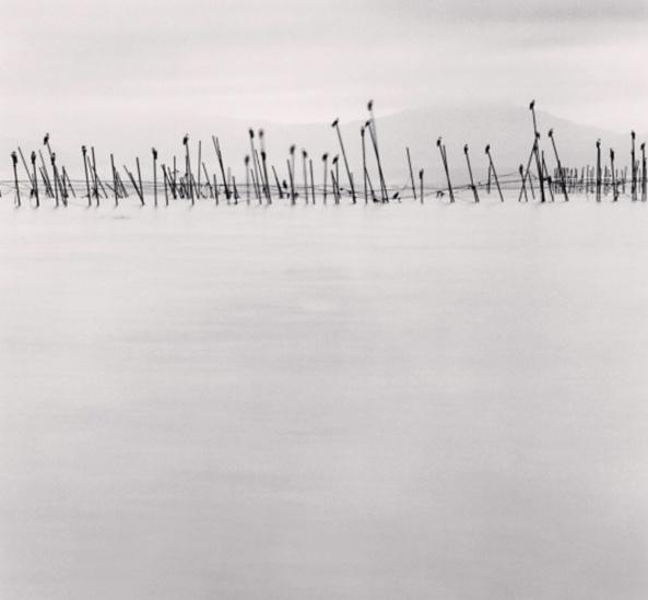 Michael Kenna, 'Birds on Poles, Biwa Lake, Honshu, Japan', 2001, Jackson Fine Art