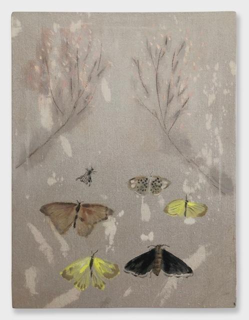 , 'Moths,' , RUSCHMAN
