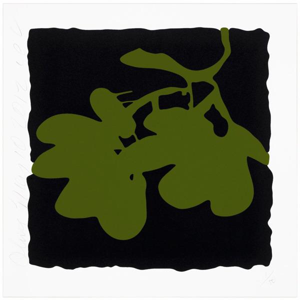 , 'Lantern flowers - Olive,' 2012, Vertu Fine Art