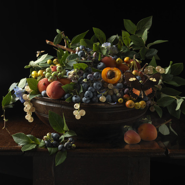 , 'Blueberries and Apricots, After G.G.,' 2013, Snite Museum of Art