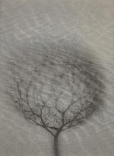 Chaco Terada, 'Element IV', 2013, photo-eye Gallery