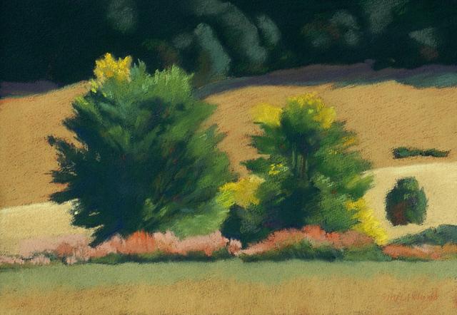 , 'Chamisa Turning,' , Ventana Fine Art