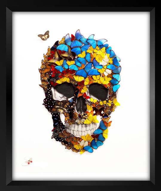 , 'Butterfly Skull,' 2017, Eden Fine Art