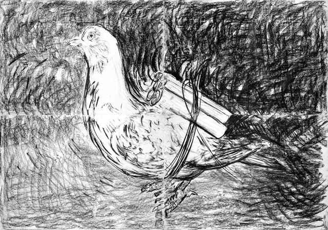 , 'Pigeon,' 2016, Cahiers d'Art