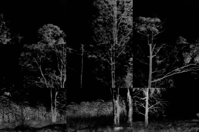 , 'Restless Landscape #1,' 2017, Goodman Gallery
