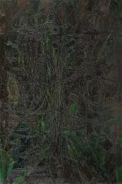 La lamda nel bosco delle gerre