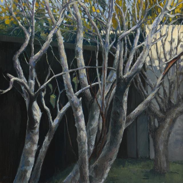 Jeff Bellerose, 'Branches', 2018, Paul Thiebaud Gallery