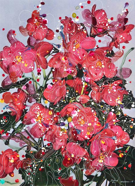 , 'Begonia Elatior Hybrida Baardse's Wonder,' 2018, Edwynn Houk Gallery