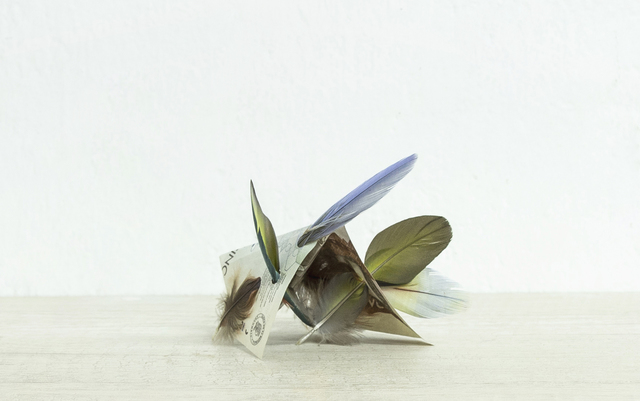 , 'Billete de 5000 pesos Colombianos (Katchina),' 2019, CuratorLove