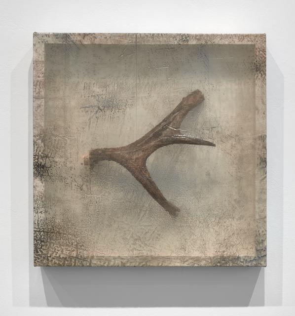 , 'Remnant (Moose Antler III),' 2019, Minus Space