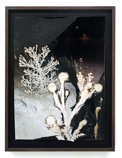 , 'Untitled,' 2019, Juan Silió