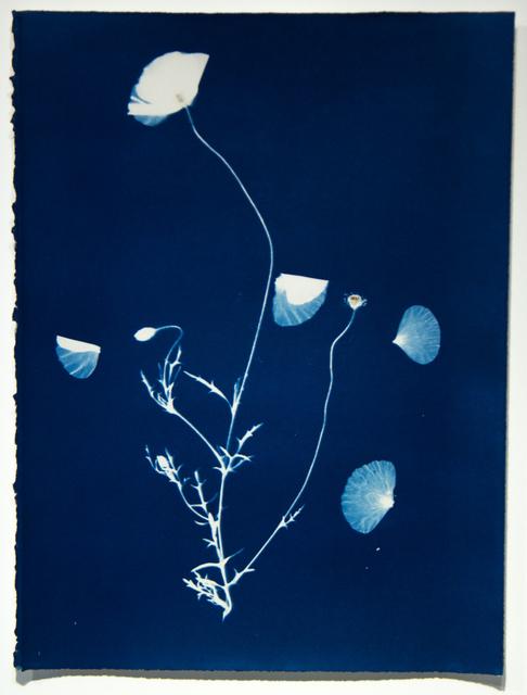 , 'Untitled C52,' 1998, ClampArt