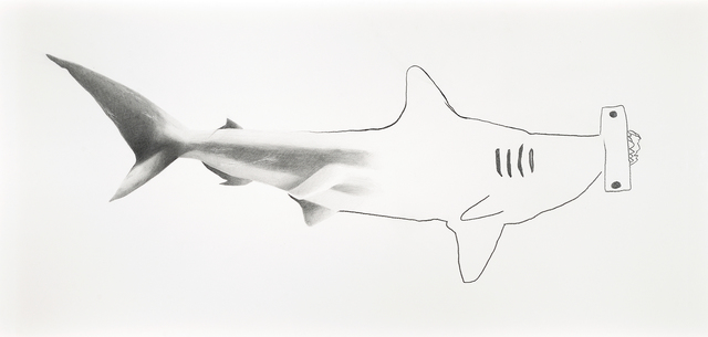 , 'Tiburón martillo,' 2017, Galerie C.O.A