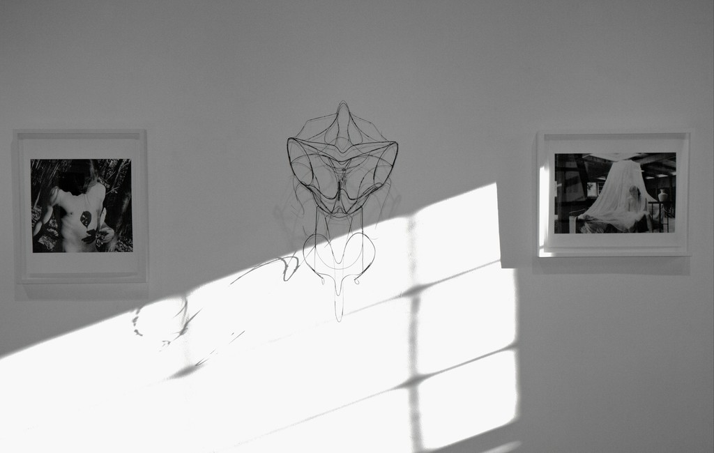 "Installation view: including ""Company- Self portrait"" 1998, ""Butterfly girl"" 1995, and ""Veil- Self portrait"", 1994."