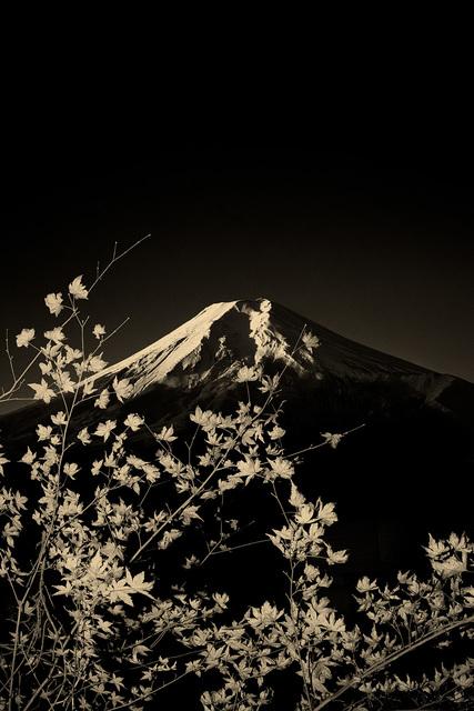 , 'Fuji III,' 2019, Bildhalle