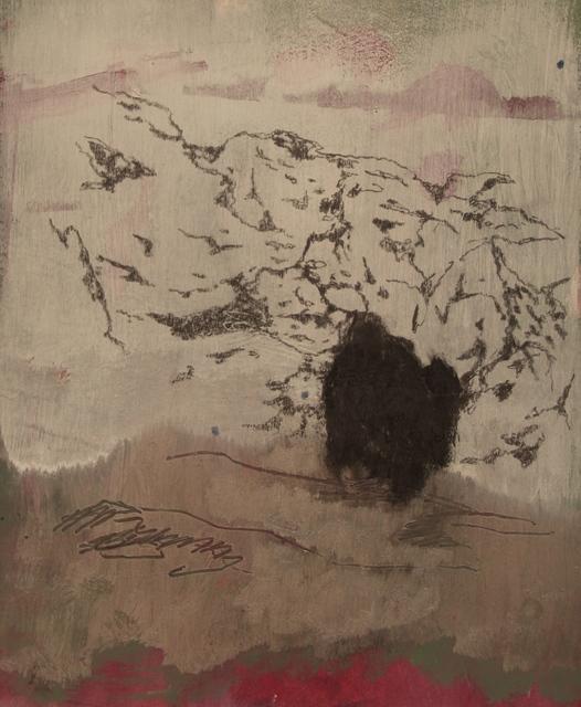 , 'Caves No. 8,' 2014, Instituto de Visión