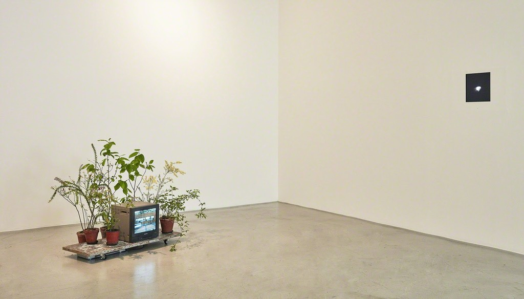 Installation view of In Praise of Inaction at Kukje Gallery K1