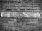Christopher Cutts Gallery