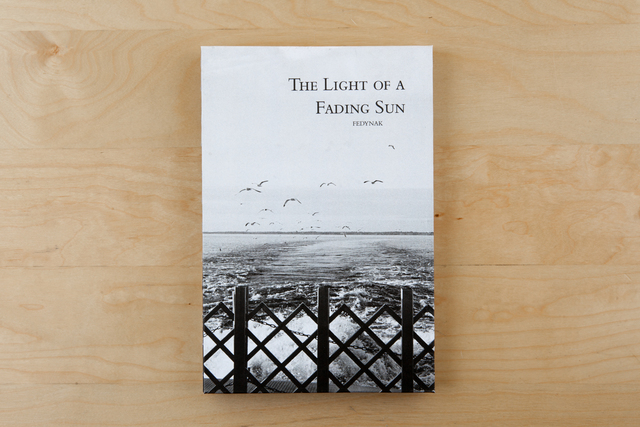 , 'The Light of a Fading Sun,' 2014, Zatara Press