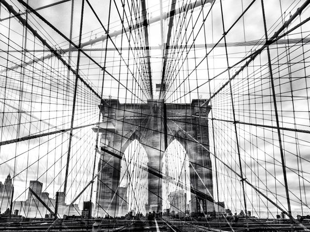 , 'Web (New York, USA),' 2014, Galerie de Bellefeuille