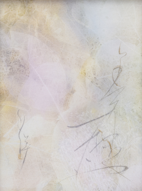 Chaco Terada, 'Veil for the Memories 1', 2019, Mixed Media, Archival pigment print on layers of silk organza with sumi ink and mineral pigments, Valley House Gallery & Sculpture Garden