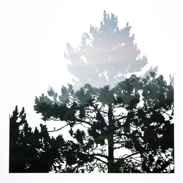 , 'Floating No.3 (Pines),' 2018, parts gallery