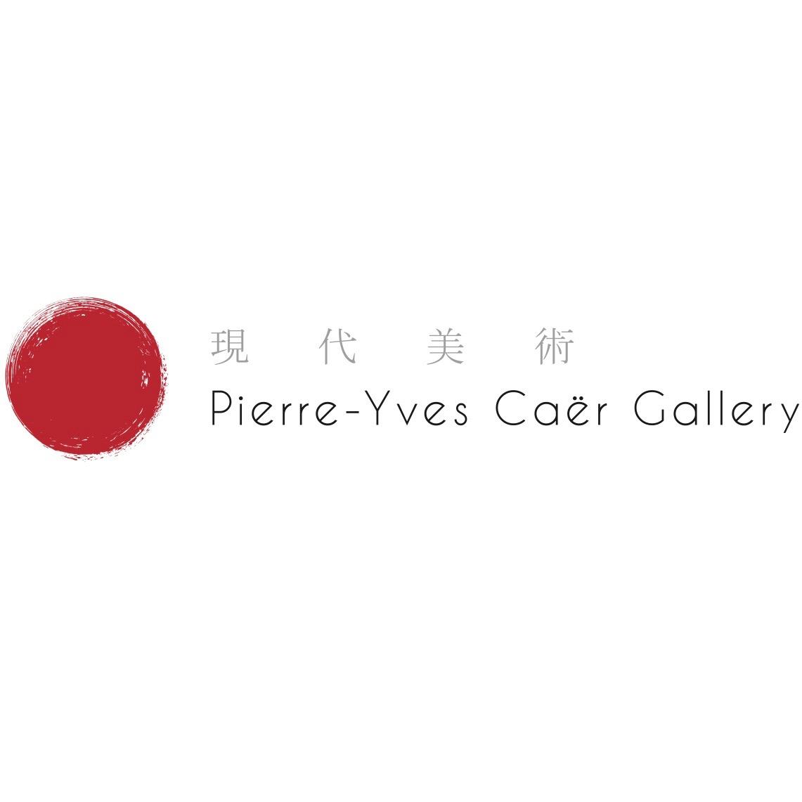 Pierre-Yves Caër Gallery