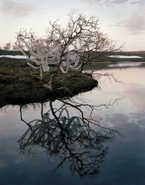 , 'Dusk,' 2014, Galleri Andersson/Sandstrom