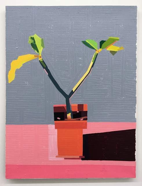 Guy Yanai, 'Plant on Roof', 2019, CONRADS