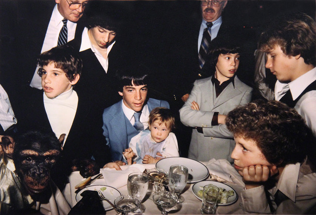 Jeff Mermelstein, 'Zippy the Chimp at Bar Mitzvah', 1982, Photography, ClampArt