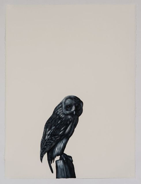 , 'Tawny Owl (after Rankin),' 2016, Sears-Peyton Gallery