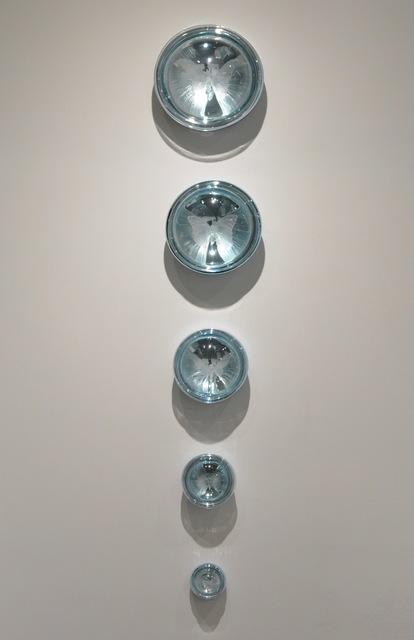 , 'Taxonomy/Memory ,' , Momentum Gallery