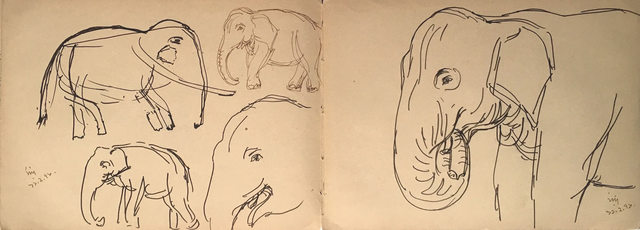 , 'Elephant, animal drawing, Ink on paper by Bengal Master Artist Indra Dugar,' 1976, Gallery Kolkata