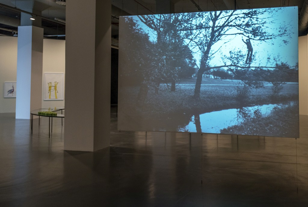 "Bas Jan Ader, Broken Fall (Organic), 1971. Installation view at ""TILL IT'S GONE: An Exhibition on Nature and Sustainability"" at Istanbul Modern, 2016."