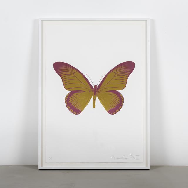 Damien Hirst, 'The Souls IV - Oriental Gold - Loganberry Pink', 2010, Samuel Owen Gallery