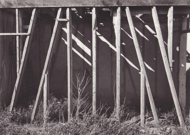, 'Ruines en bois,' 1954, Galerie Nathalie Obadia