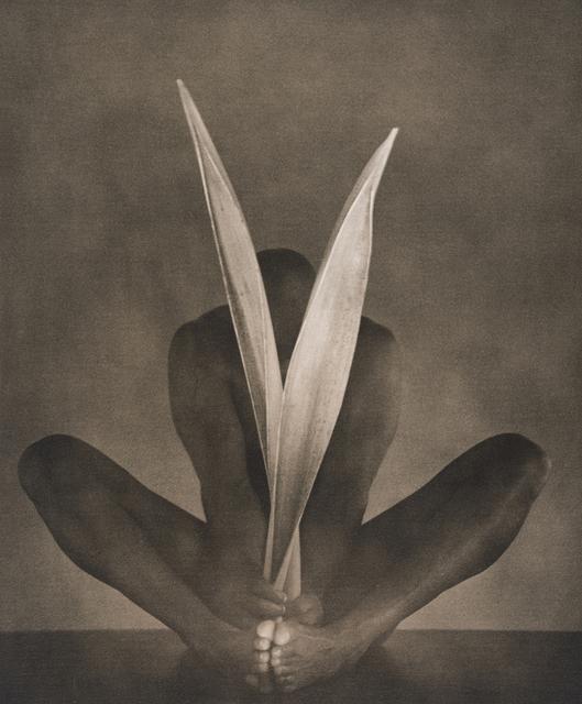 John Casado, 'Untitled 11295', 2001, Andra Norris Gallery