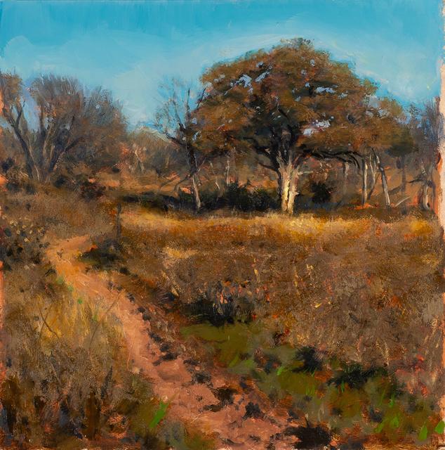 Bob Stuth-Wade, 'Trail Between Thorns', 2018, Valley House Gallery & Sculpture Garden