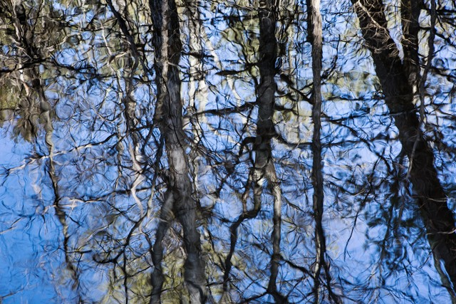 , 'Reflections #2,' 2013, 555 Gallery